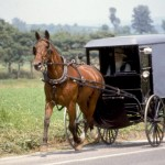 Pennsylvania, Lancaster County, Amish Horse And Buggy.